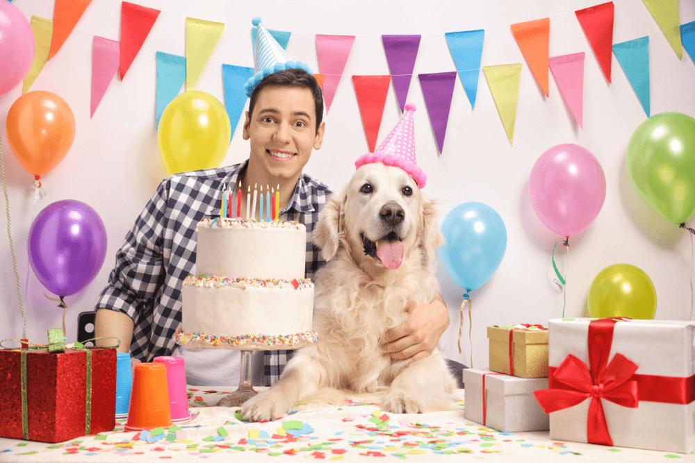 Fotos de cumpleaños para perros