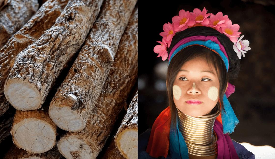 thanaka entre los productos mas recomendados para eliminar el vello facial