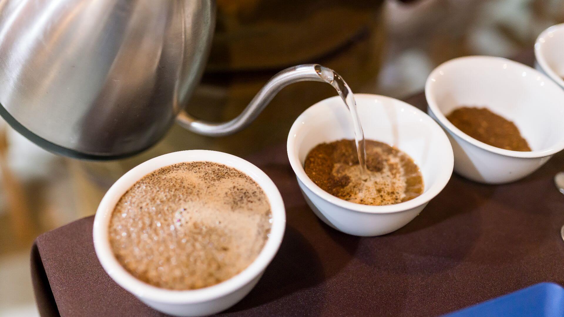 catar cafe calidad