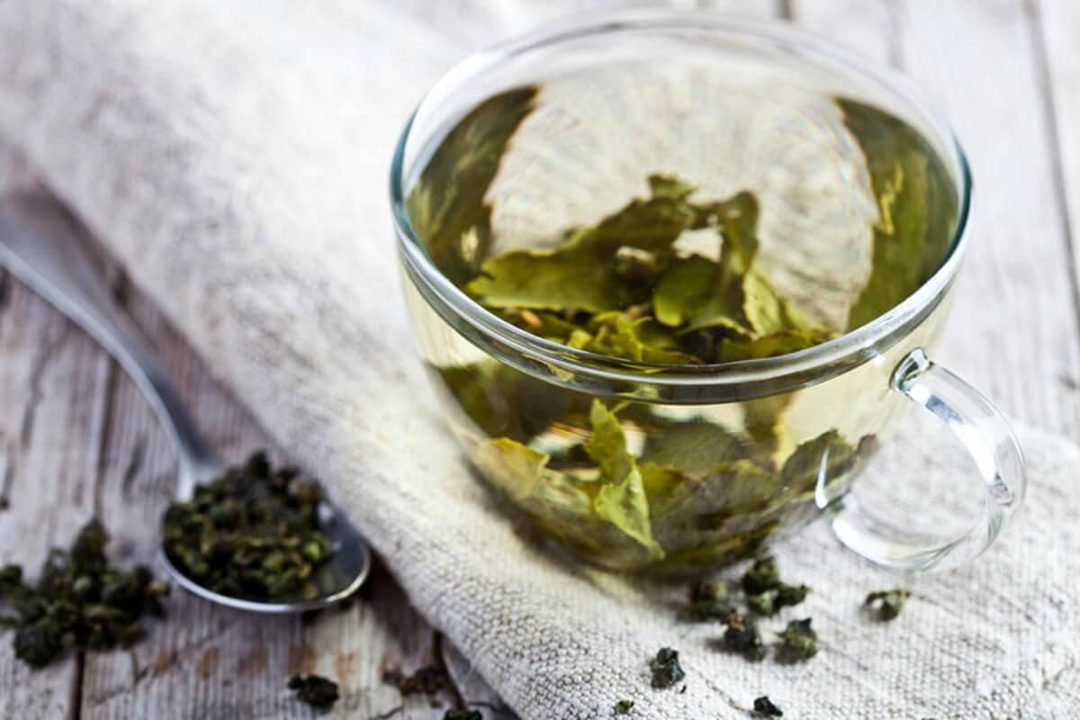 bebida de té verde natural