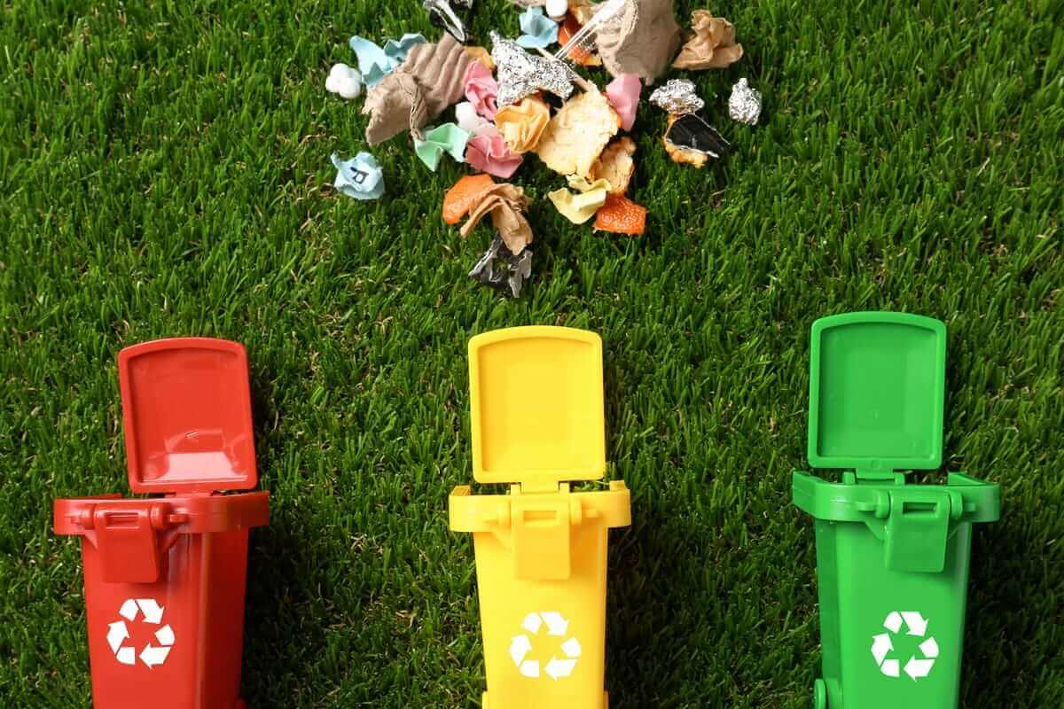 separar tus desperdicios