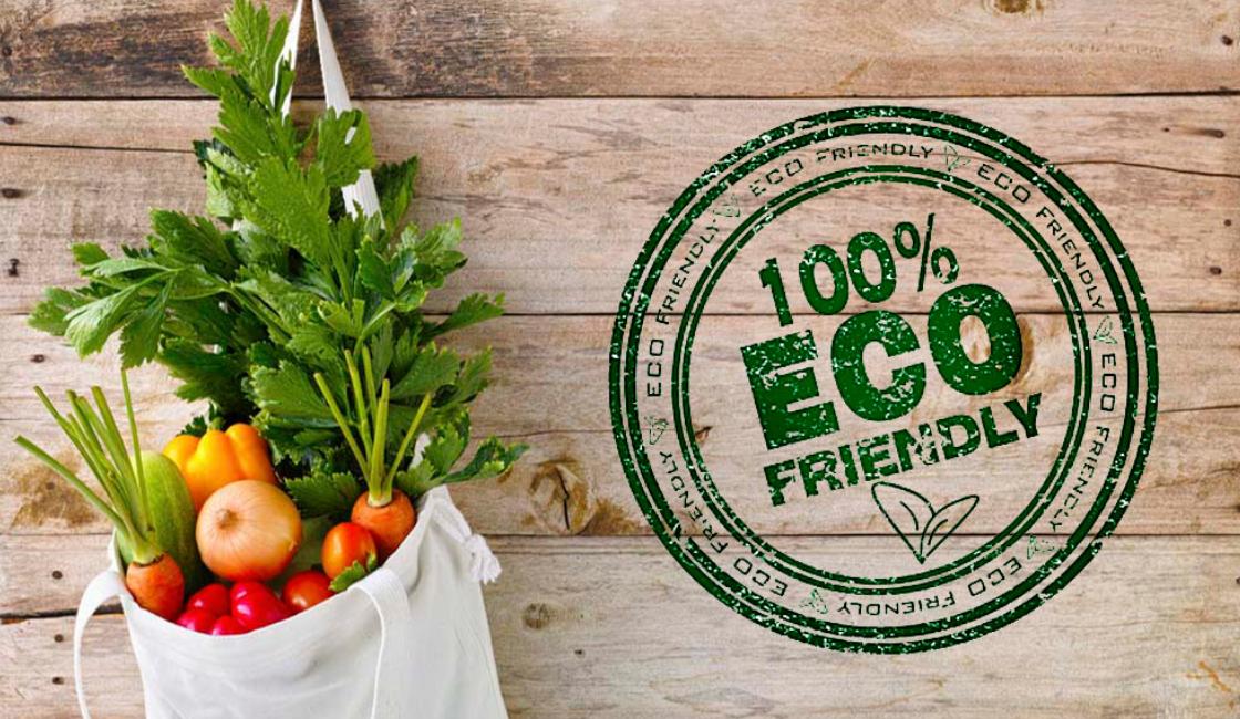Bolsas Ecológicas para Mercado