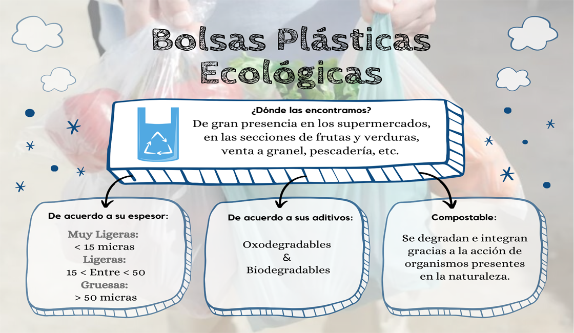 Bolsas Ecológicas Mapa Conceptual