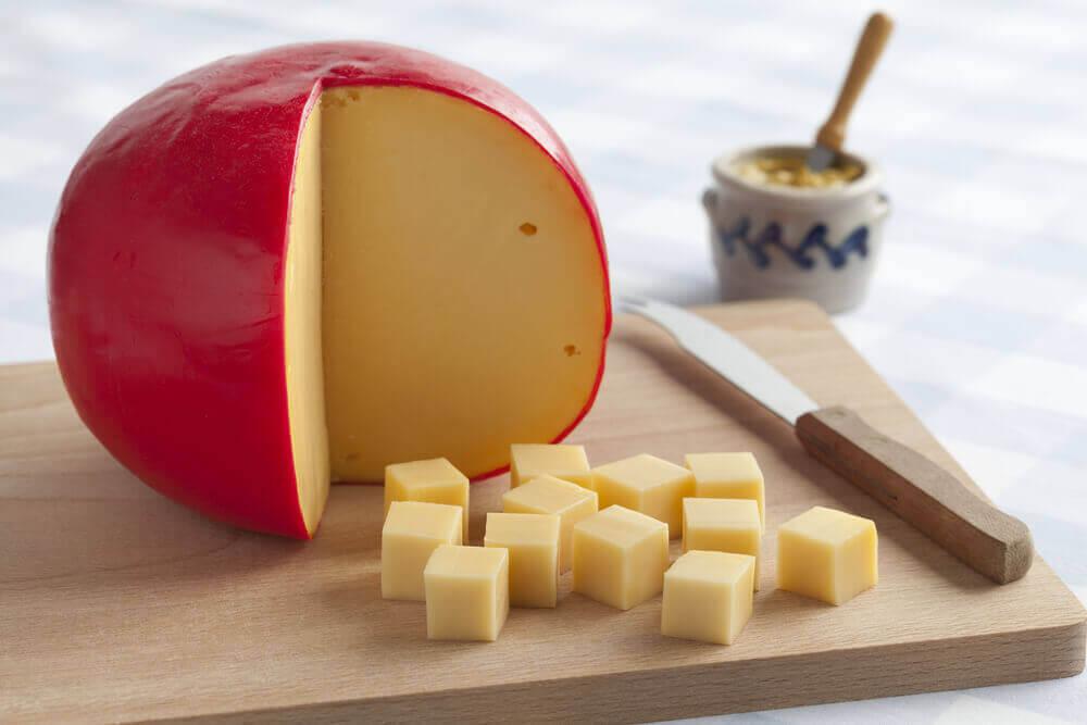 queso edam