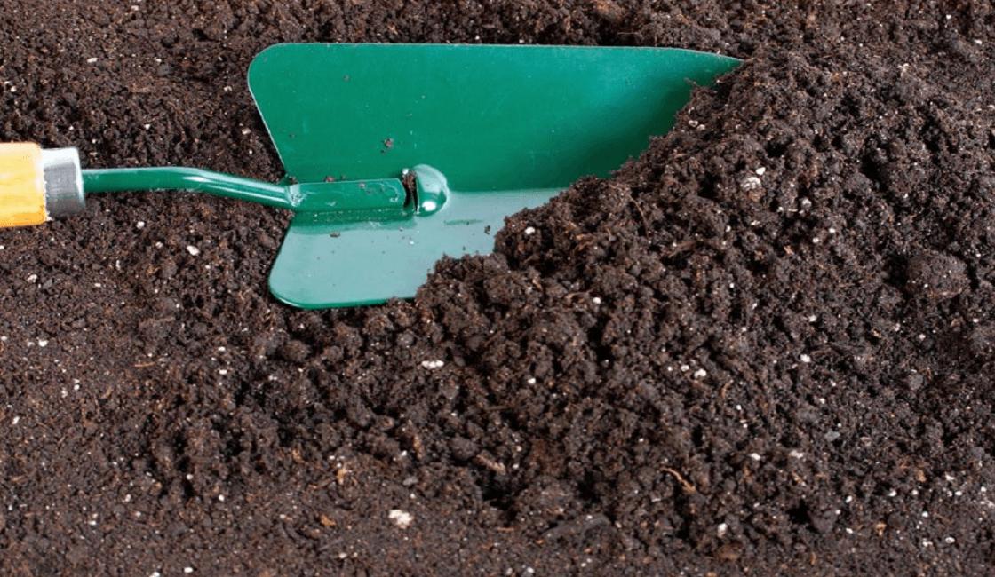 Cultivo de tierra con espátula