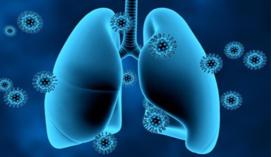 alimentos para limpiar pulmones